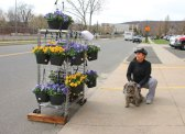 Concetta Joy Palmieri, of Naugatuck, and her dog, Luigi, check out the flowers for sale by Naugatuck fire headquarters on Maple Street April 13 during the Naugatuck Firefighters Local 1219's annual Easter Flower sale. The union uses the money to help the community, including sponsoring sports teams, school functions and borough events. –LUKE MARSHALL