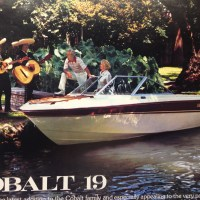 1974 Cobalt Classic 19CD For Sale