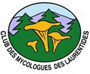 Club des mycologues des Laurentides