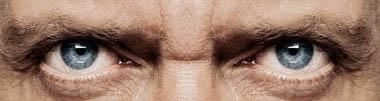 house-eyes.jpg