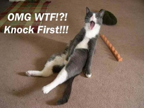 omg-wtf-knock-first.jpg