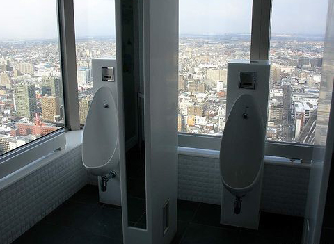 urinal_withview.jpg