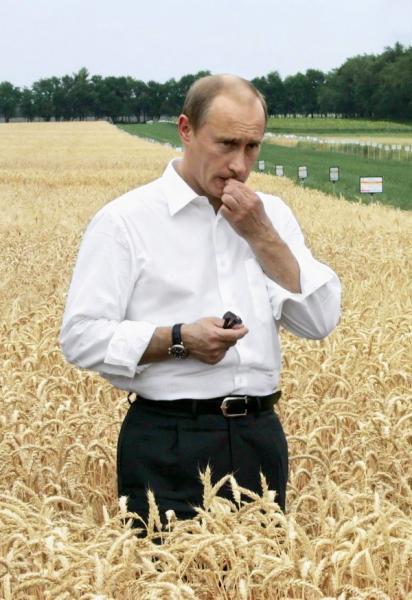 putin-in-wheat.jpg