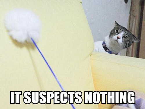 it-suspects-nothing.jpg