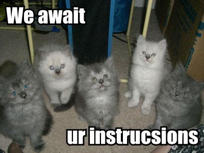we-await-ur-instrucsions.jpg