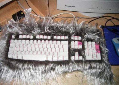 furry-keyboard.jpg
