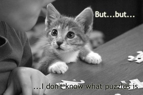 puzzle-cat