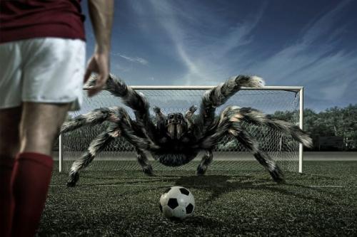 bad-goalie