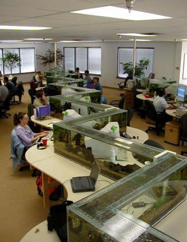 office-aquarium.jpg