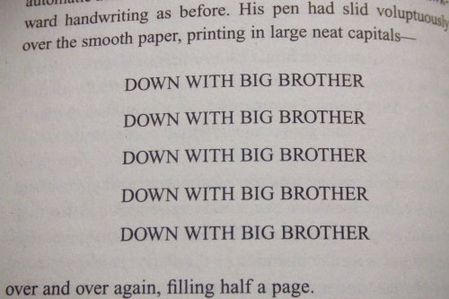 Down With Big Brotherd