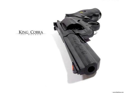 King Cobra 357 Magnum Pistol