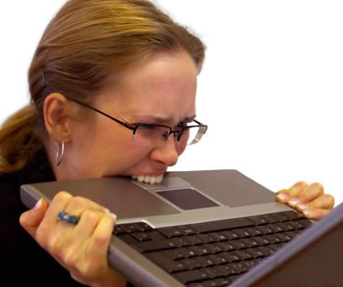 laptop biter