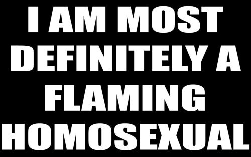 i am most definately a flaming homosexual