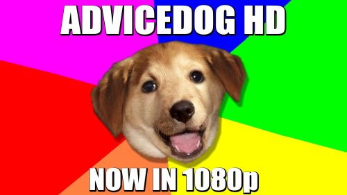 advicedog HD now in 1080p