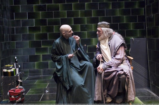 voldemort and dumbledore