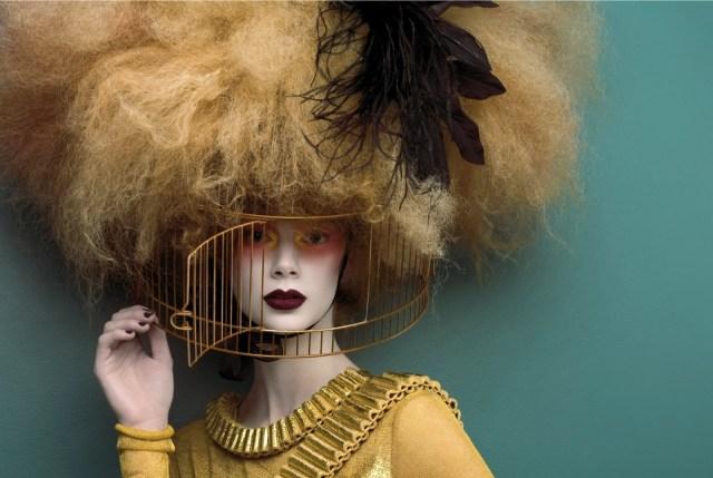 bird cage hair hat