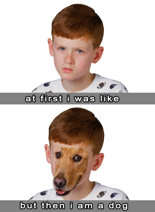 at first I was like, but then I am a dog