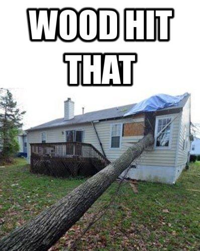wood hit that