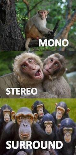 mono - stereo - surround