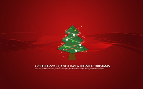 have a blessed christmas