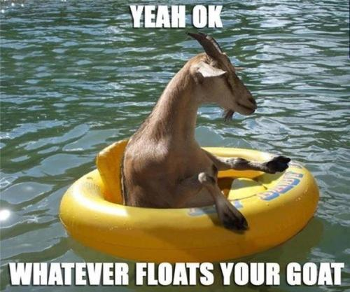 yeah ok, whatever floats your goat.jpg