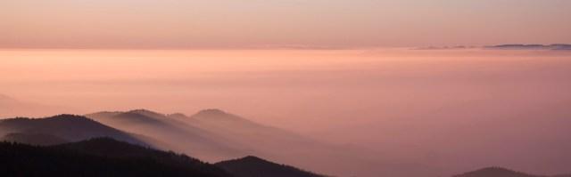 morning mists.jpg
