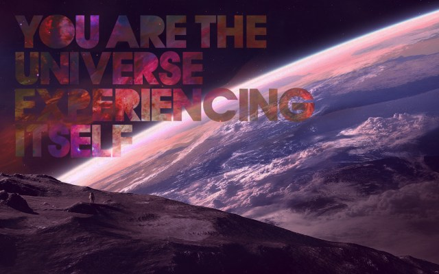 you are the universe experiencing itself.jpg