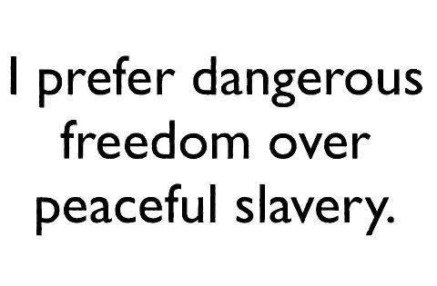 I prefer dangerous freedom over peaceful slavery.jpg