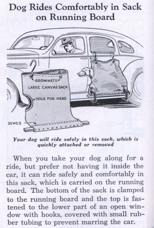 dog carrier for car.jpg
