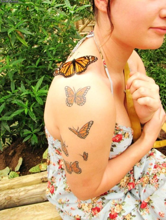 butterfly and butterfly tattoos.jpg