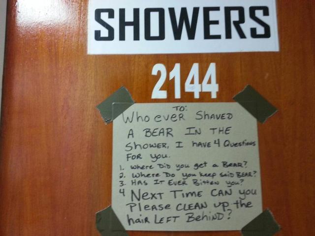 showers - bear shaving.jpg