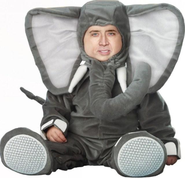 Cage Elephant.jpg