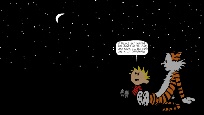 Calvin and Hobbes - Stars.png