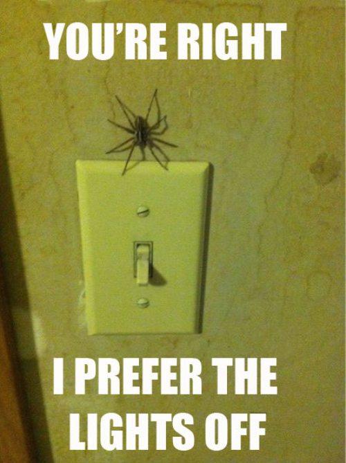 I prefer the lights off.jpg