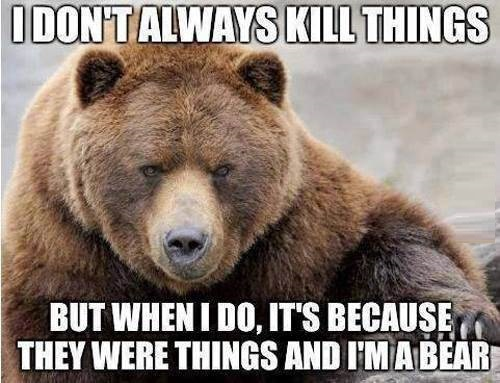 the most interesting bear in the world.jpg