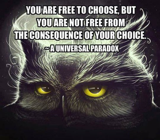 you are free to choose.jpg
