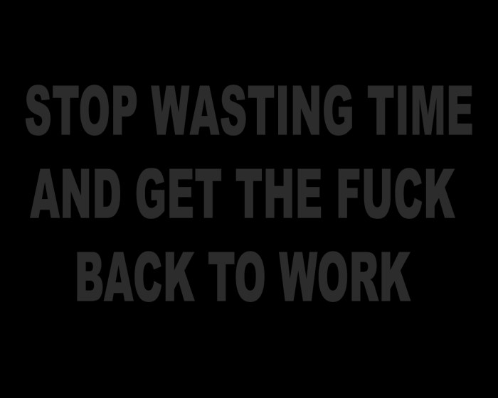 stop wasting time and get the fuck back to work .jpg