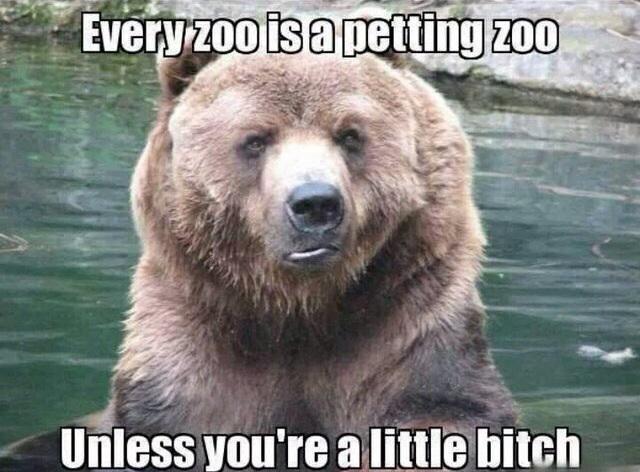 Every zoo is a petting zoo.jpg