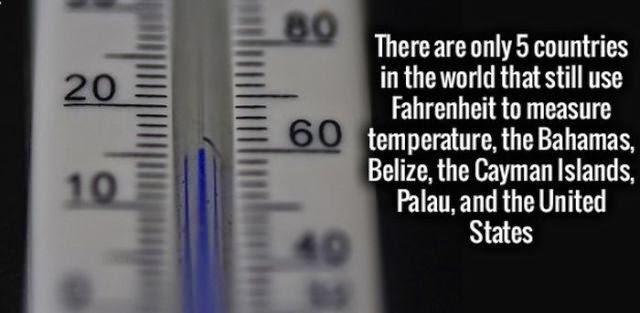 Cold Hard Fact.jpg