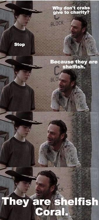 shelfish.jpg