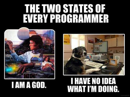 The two states of every programmer.jpg