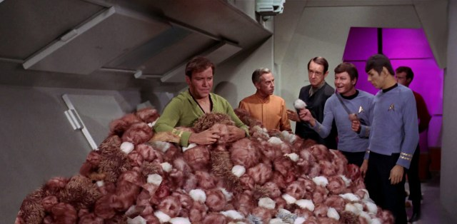the trouble with tribbles.jpg
