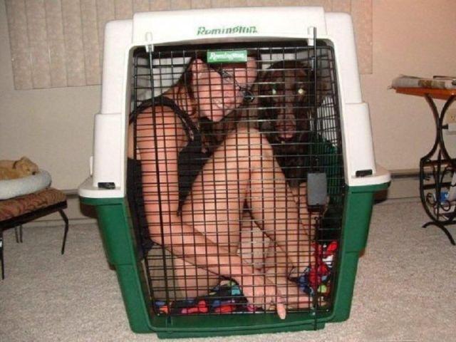 Caged Heat.jpg