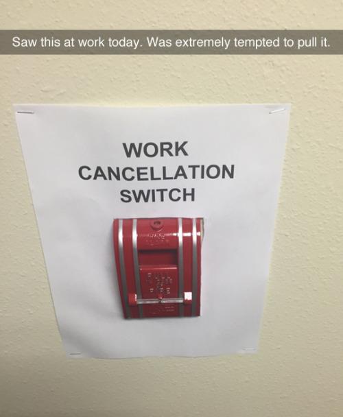Work Cancellation Switch.jpg