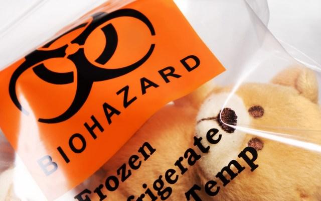 biohazard bear.jpg