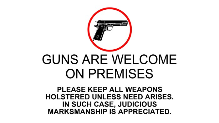 Guns Are Welcome.jpg