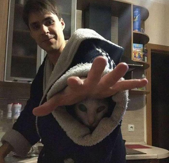 robe cat.jpg