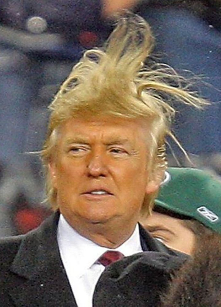 The Trump's Hair is alive.jpg