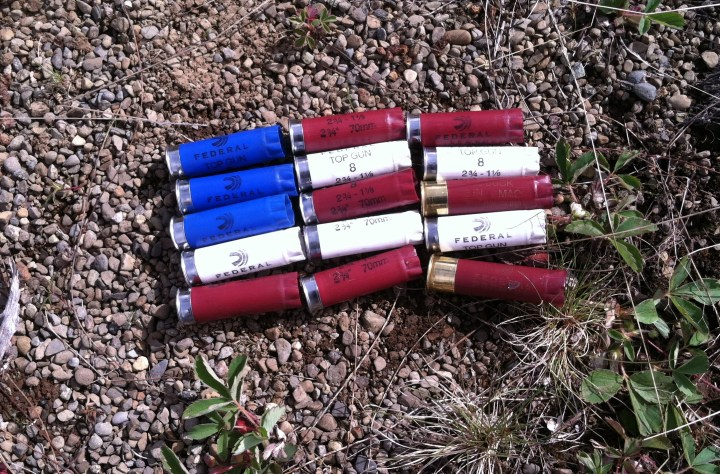 Spent Ammo for the fourth.jpg