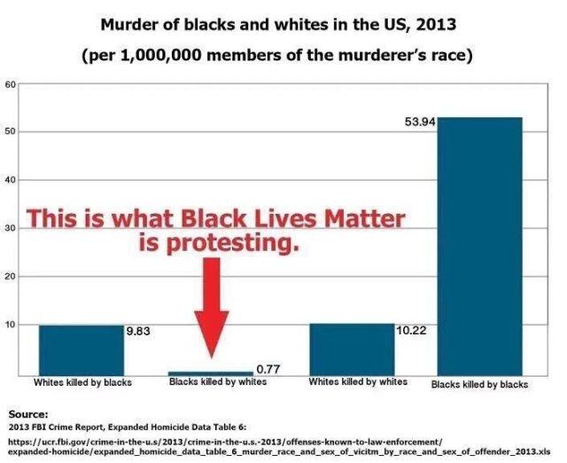 murder of blacks and whites in the US, 2013.jpg